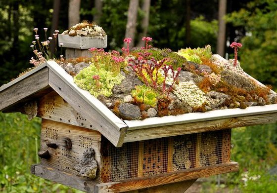hotel-insectes-Home-Sweet-Home